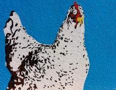 Chicken | Donation to CASA
